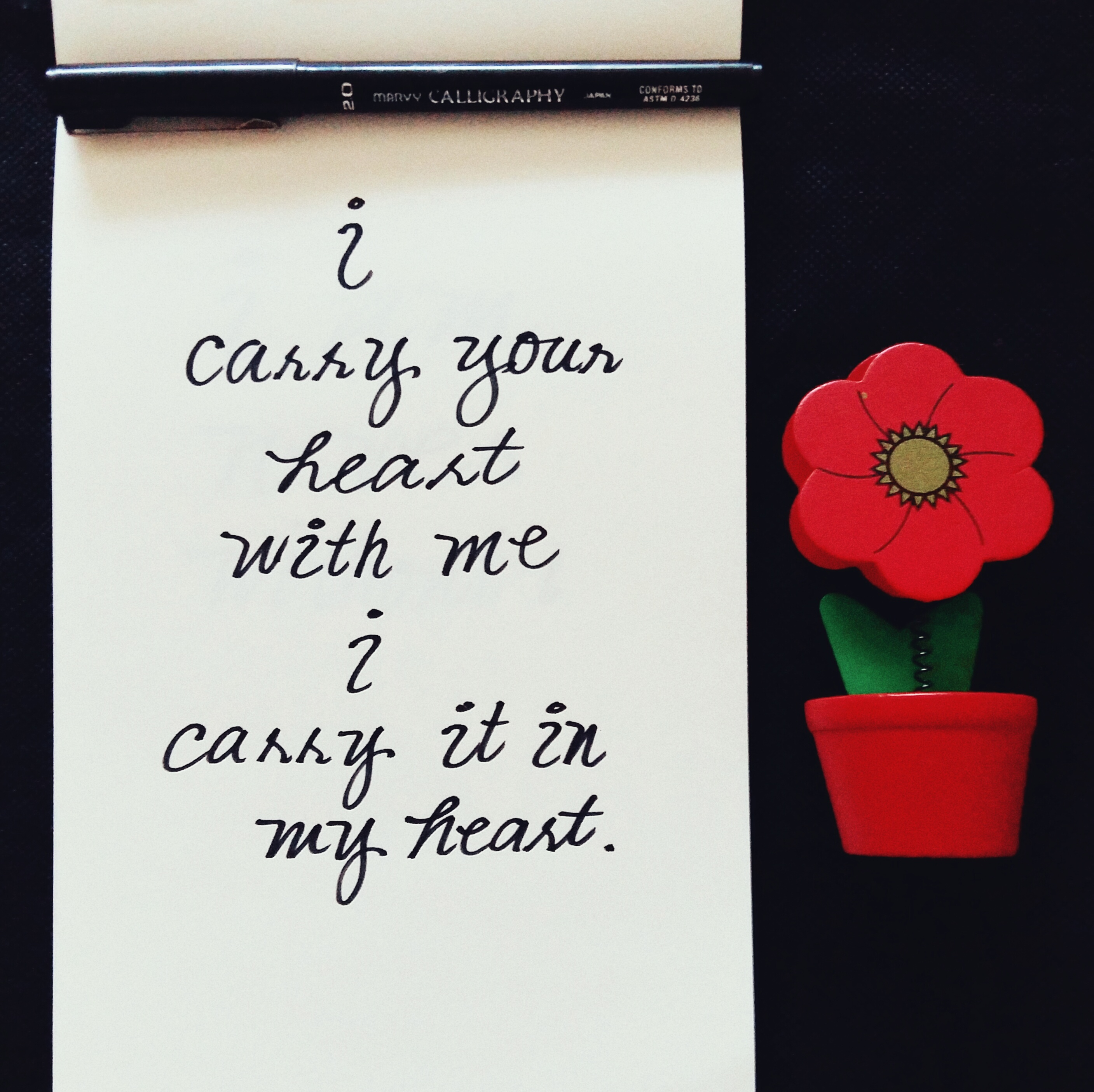 I Carry Your Heart With Me_2