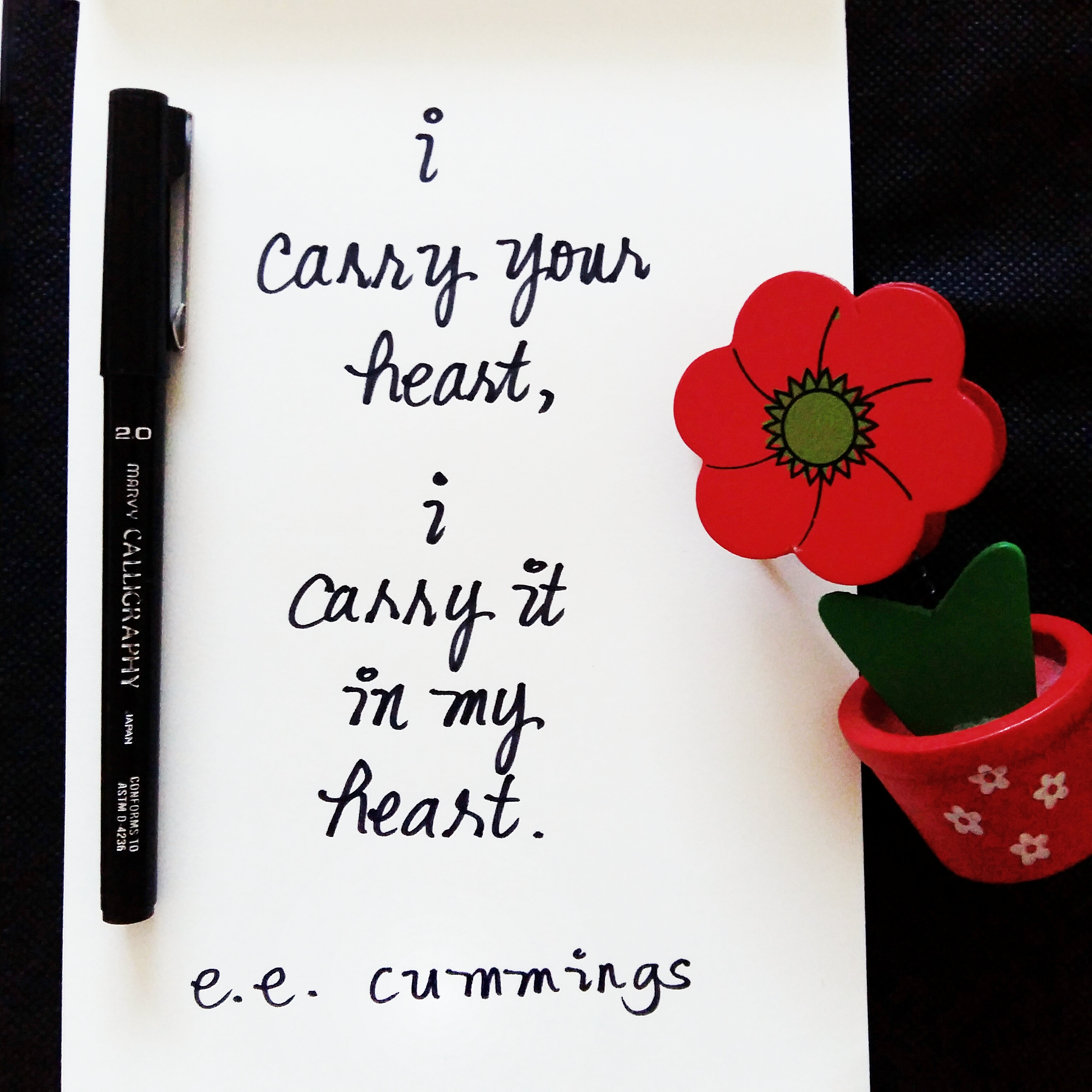 I Carry Your Heart With Me_6